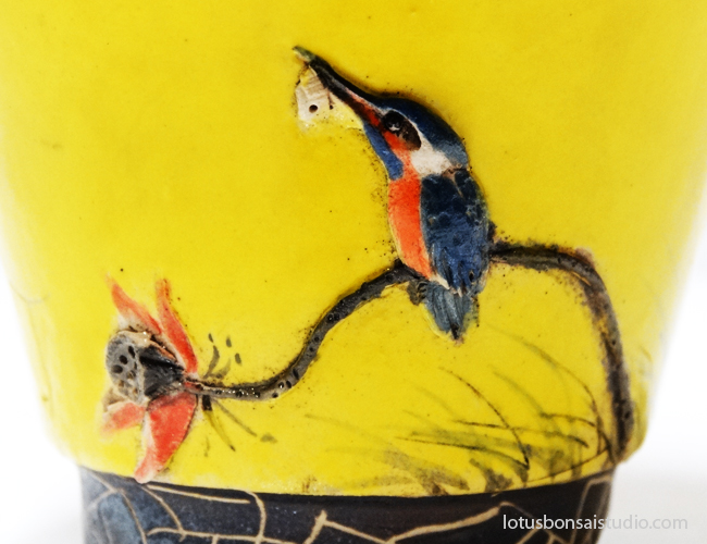 bonsai-kingfisher-pot-lotus