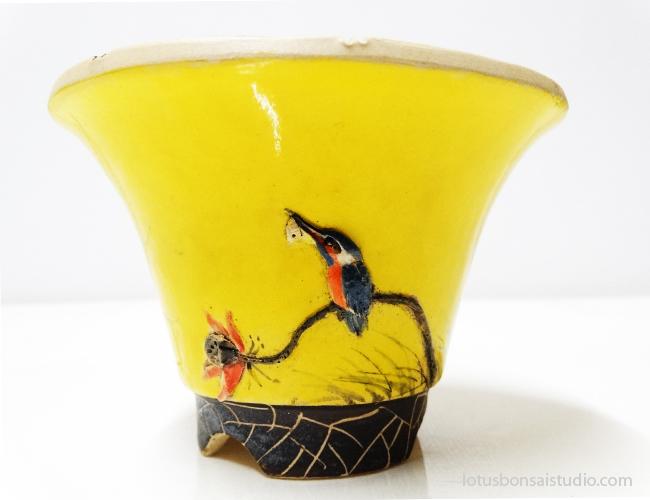 bonsai-kingfisher-pot