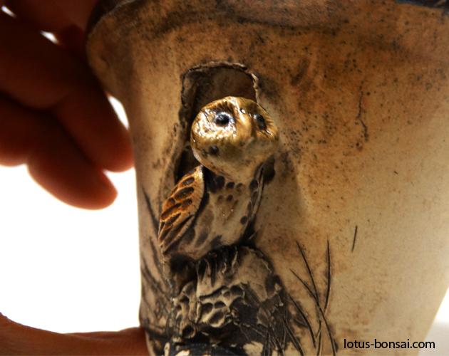 bonsai-owl-pot-2