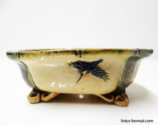 bonsai-kingfisher-pot-2