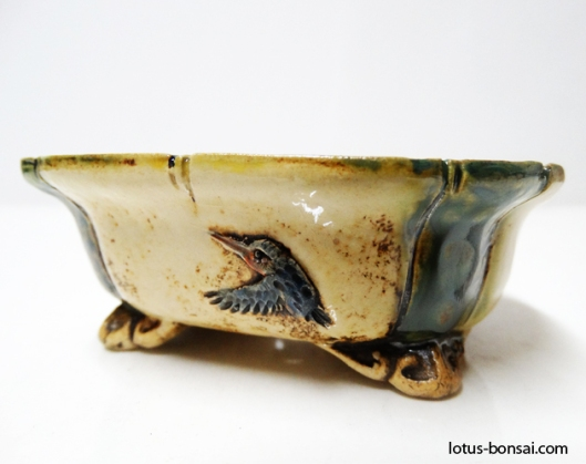 bonsai-kingfisher-pot
