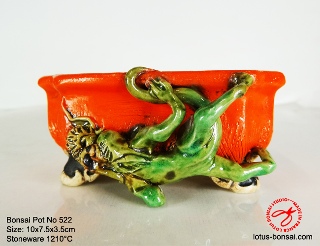 bonsai-pot-on-522