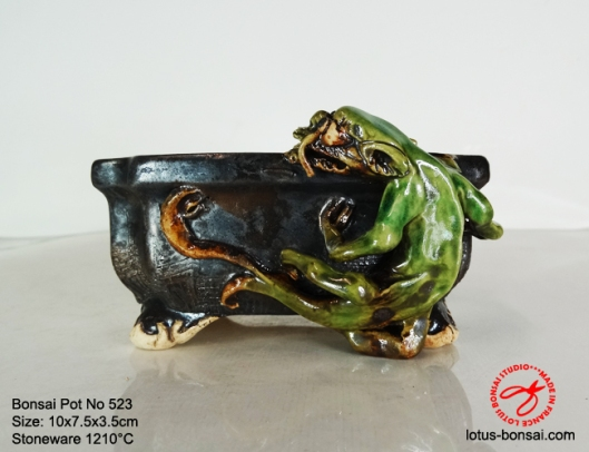 bonsai-pot-on-523