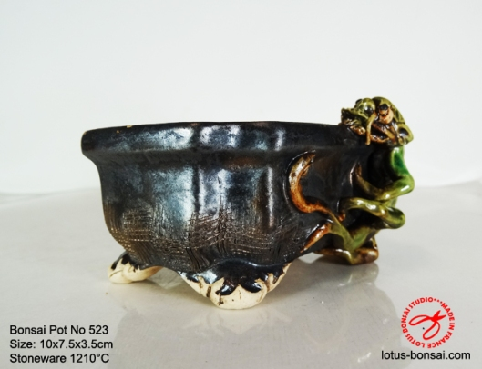 bonsai-pot-on-523b