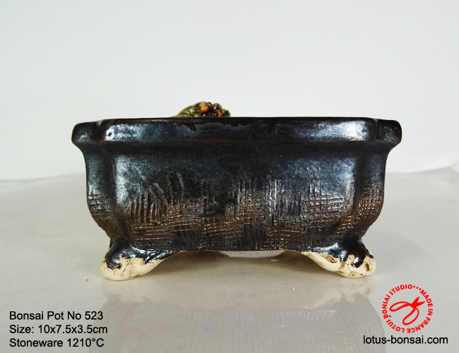 bonsai-pot-on-523c