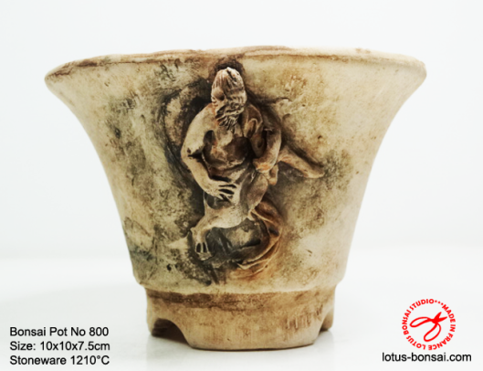 bonsai-pot-no800